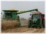 Record Corn Harvest Coming In To  Elevators Across The State