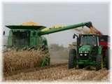Harvest Making Slow Progress