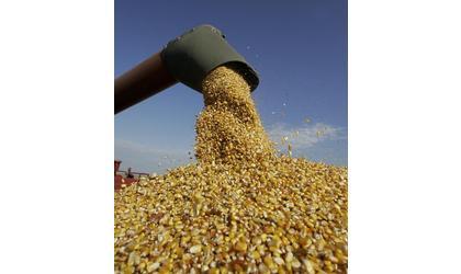 Corn progress behind a year ago (Kansas)