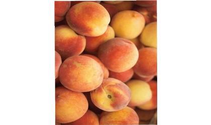Early Risers Kiwanis Selling Georgia Peaches this Saturday