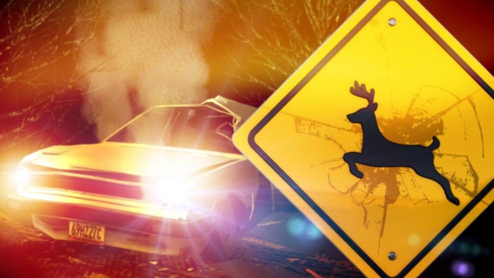 Vehicle/Deer Accident Injures a Turpin Man