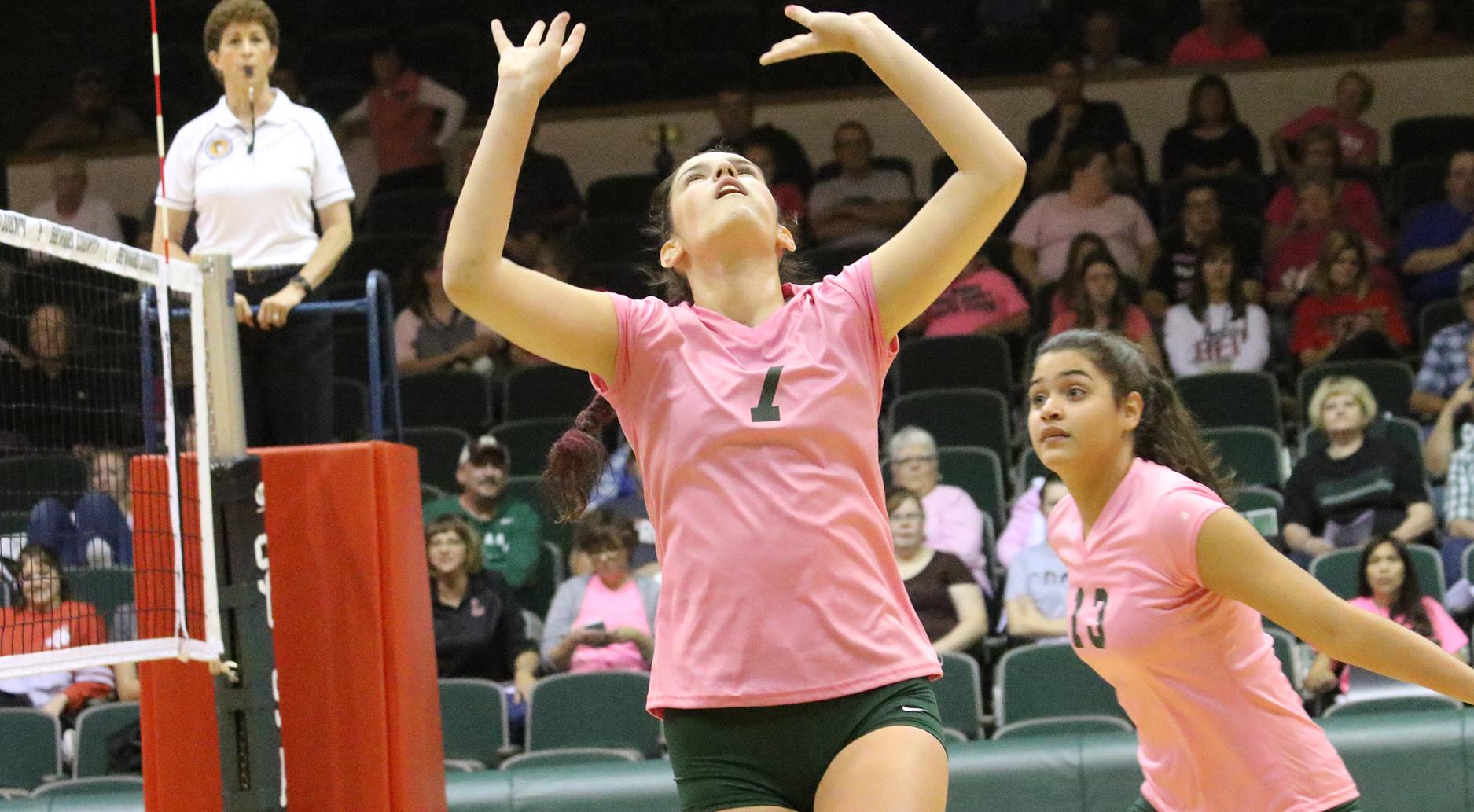 Saints Inch Closer to Jayhawk Volleyball Title