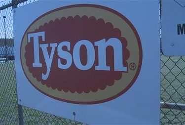 Tyson Officials Determine Cause of Fire