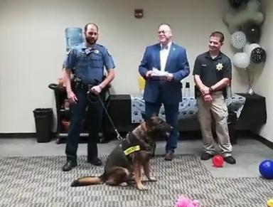 Seward County Retires Drug Dog Niko